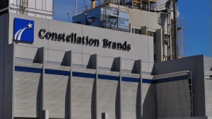 Constellation Brands. Rechazo a consulta.